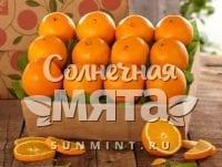 Апельсин Navel