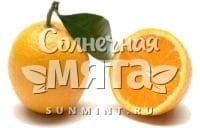 Апельсин Ovale