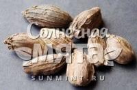 Эфиопский кардамон