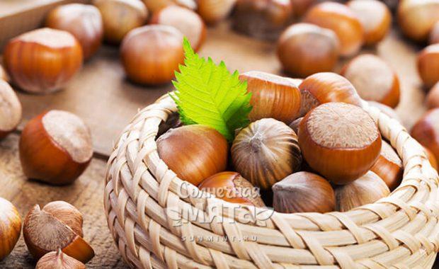 Фундук единственный орех из всех «орехов»