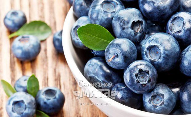 Голубика полезная ягода, «бьющая в голову»