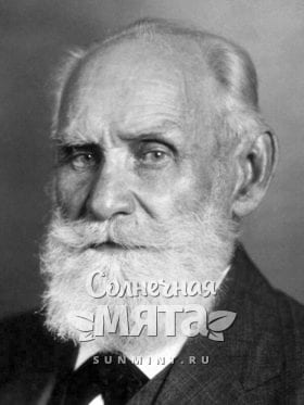 Иван Петрович Павлов, фото