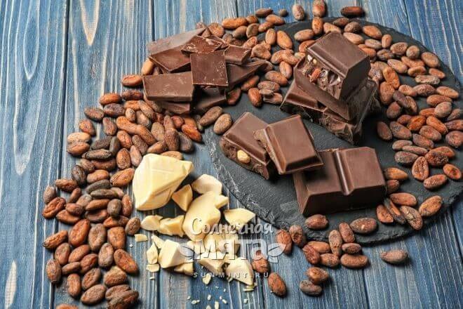 Из масла какао делают шоколад