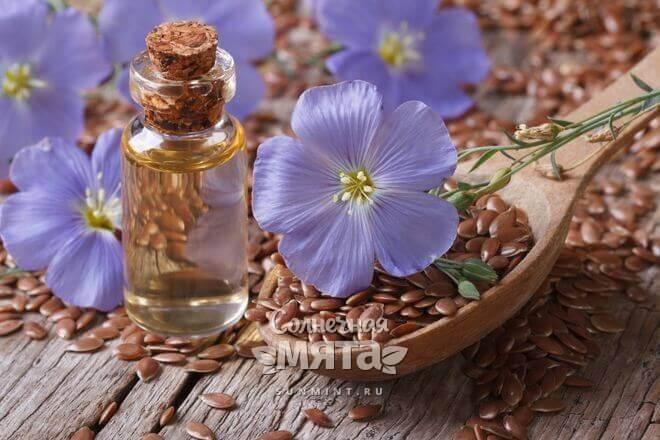 Из семян льна давят масло