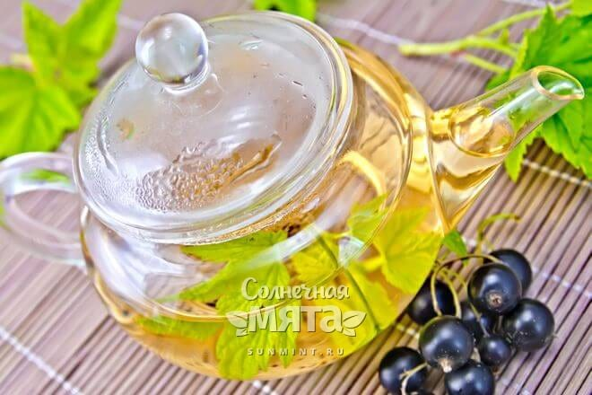 Из ягод и листьев смородины делают чай