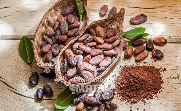 Какао фруктобоб, смахивающий на лимон, кукурузу, тыкву и ананас!
