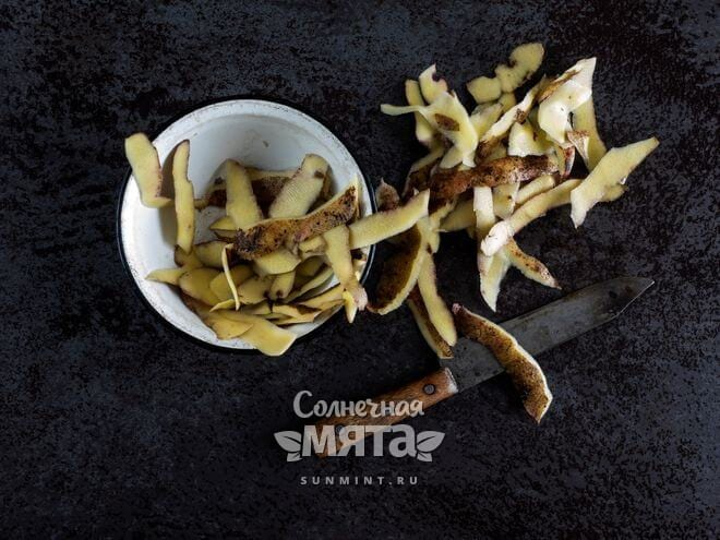 Картофельные очистки используют в хозяйстве