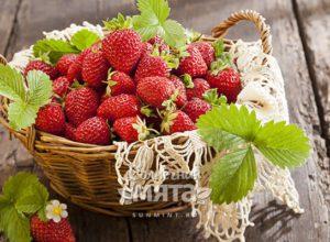 Клубника ягода ребус