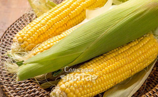 Кукуруза и жильем обеспечит, и зубы отбелит!