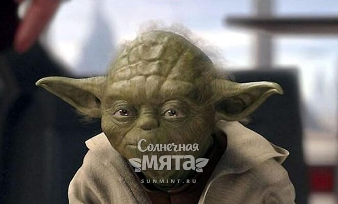 Магистр Йода, фото