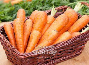 Морковь в волосах, букетах, горшках и тарелках