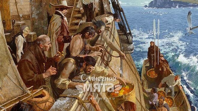 Моряки борятся с цингой при помощи цитрусов, гравюра