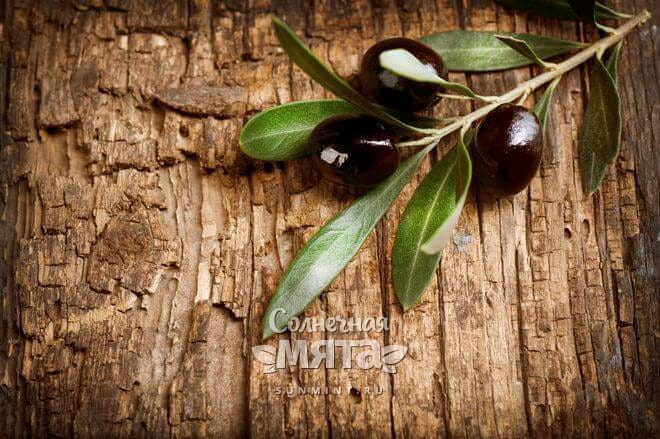 Оливковая древесина очень прочная