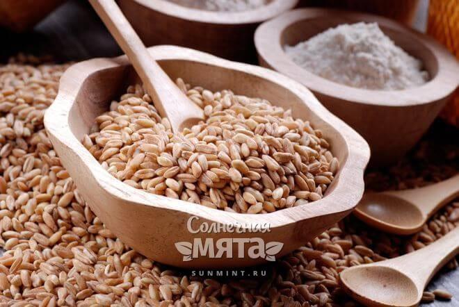 Полба нежнее пшеницы