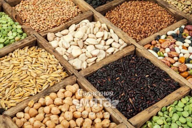 Орехи, семена и злаки в коробочках, фото