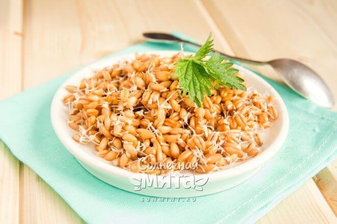 Пророщенная пшеница с витамином B4, фото