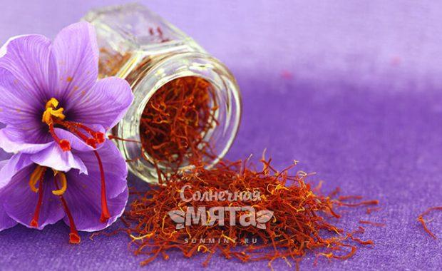 Шафран самые дорогие рыльца в мире