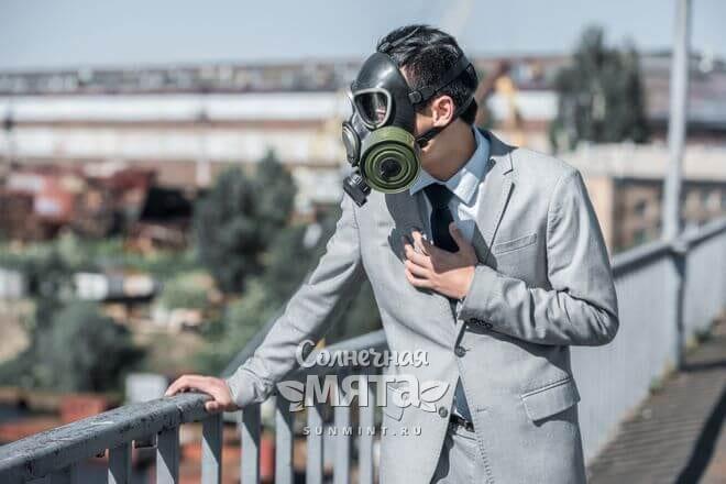 Витамин N защищает иммунитет в загрязненной среде, фото