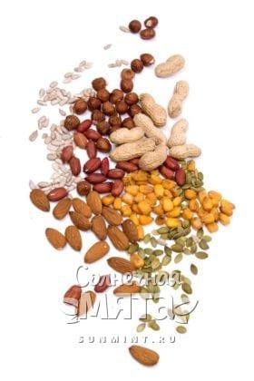 Семена и орехи, фото