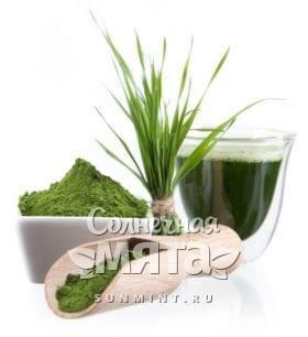 Зеленый коктейль из водорослей, фото
