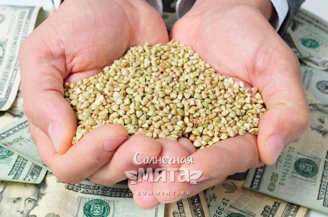 Зеленая гречка стала на вес золота