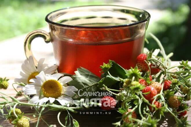 Земляничный чай ароматный и полезный