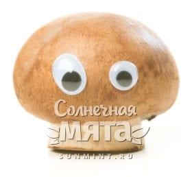 Маленький гриб с игрушечными глазами, фото