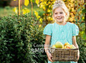 Улыбающаяся девочка держит ящик с фруктами, фото