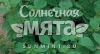 Майоран Тушинский Семко