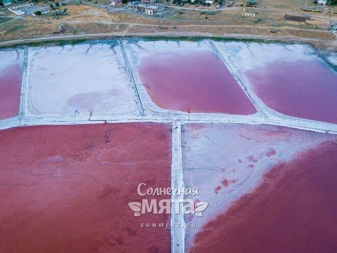 Розовая соль добывается из воды